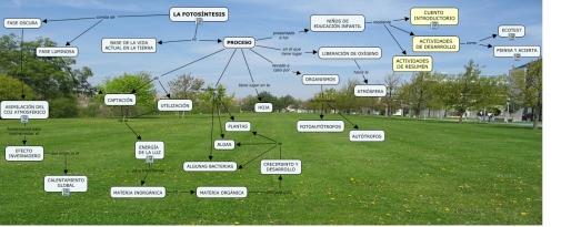 fotosintesis-para-profesor