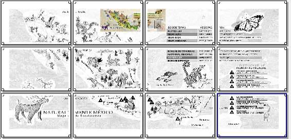 MAPA MURAL ECOSISTEMA MEXICO 4X3 LEGAL « PARA JEFATURAS REGIONALES ...