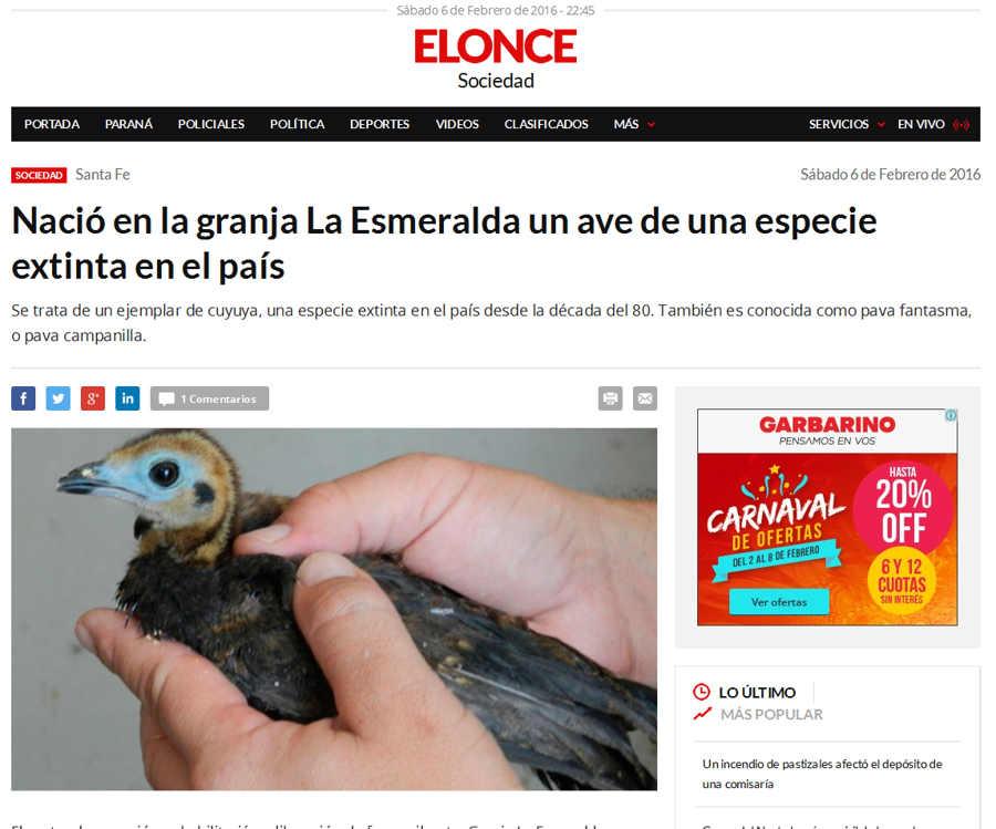 Nació en la granja La Esmeralda un ave de una especie extinta en el pais