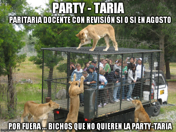 party tarias4
