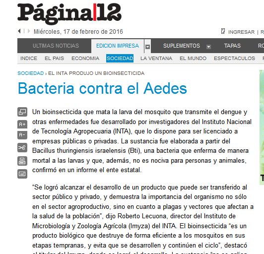 Página-12 Sociedad Bacteria contra el Aedes