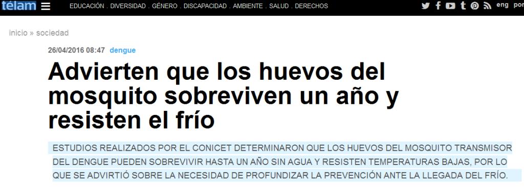Advierten que los huevos del mosquito sobreviven un año y resisten el frío - Télam - Agencia Nacional de Noticias