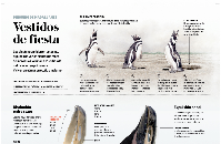 infografia-pinguino-pdf-jpg-imagen-jpeg-1168-x-3565-pixeles-escalado-17